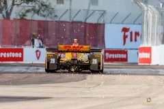 RHR-Rear-of-Car-with-Leaves-St.-Pete-GP