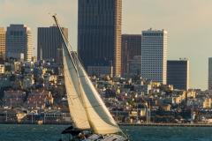 Sailboat-on-San-Fran-Bay-FF-1-1